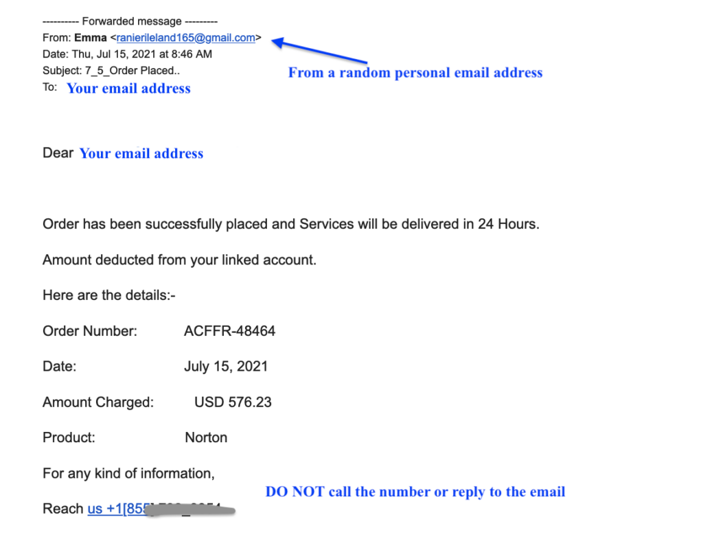 email image of fraudulent Norton purchase receipt