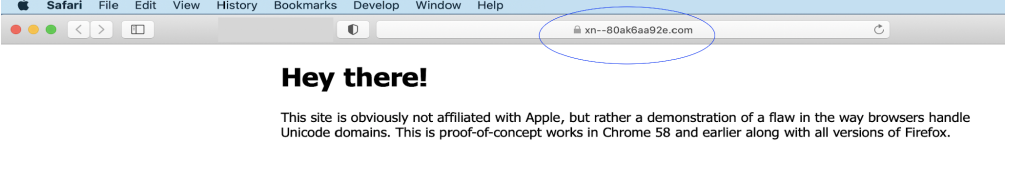 Image of how Safari treats the website